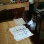 Felisters beim Lernen