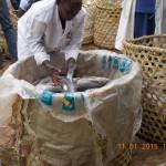 Der frische Fisch wird für den Transport verladen